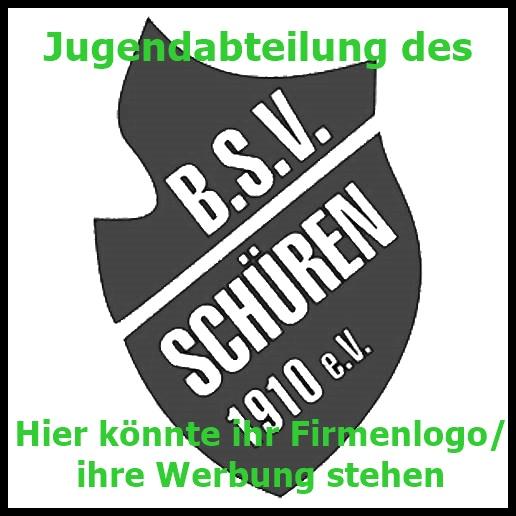 bsv-Werbung_Firmenlogo